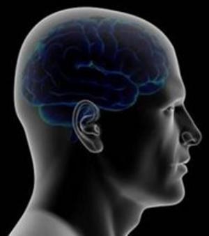Des chercheurs expliquent l'origine de la petite voix | Hospices Civils de Lyon | Scoop.it