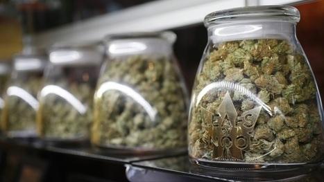 Marijuana industry looks to build brands with logos, endorsements | Nova Scotia Business News | Scoop.it