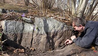 'Missing' rune stone turns up near Stockholm | Histoire et archéologie des Celtes, Germains et peuples du Nord | Scoop.it
