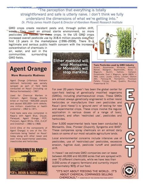 Occupy Monsanto   Natural Revolution   Scoop.it