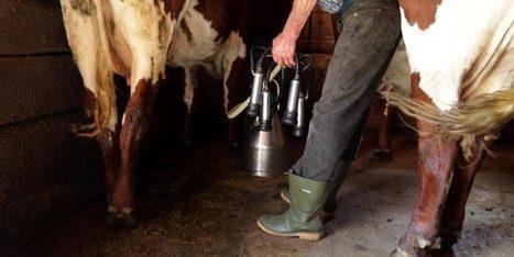 20 Minuten - Apps und GPS erobern die Landwirtschaft - News | FilFallt | Scoop.it