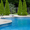 Crystal Pool Services