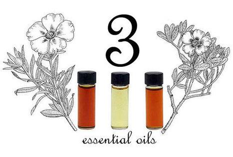 Exploring Unusual Essential Oils « The Mountain Rose Blog   Healing Board   Scoop.it