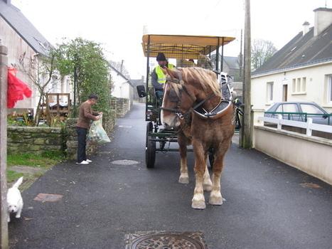 Le cheval, une énergie urbaine 100% renouvelable | Économie circulaire locale et résiliente pour nourrir la ville | Scoop.it