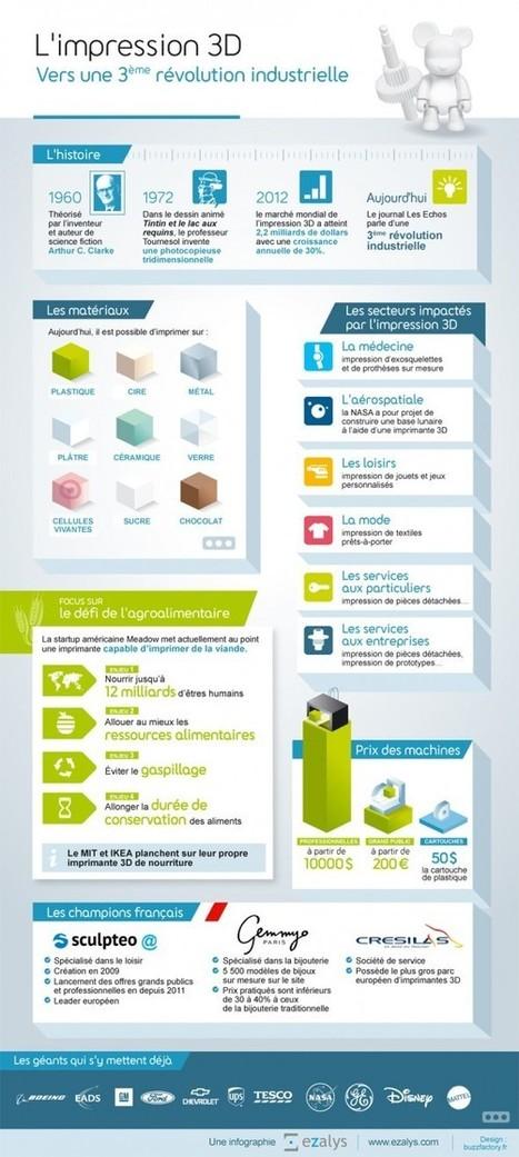 Infographie : l'impression 3D en une image | Communication & marketing durable, éco-conception | Scoop.it