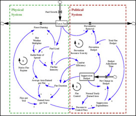 Introduction to System Dynamics | Complex Networks Everywhere | Scoop.it