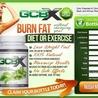 GCBX Green Coffee Bean