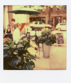 'Roid Week 2013, July 15-19 « Flickr Blog | Film Photography Rules! | Scoop.it