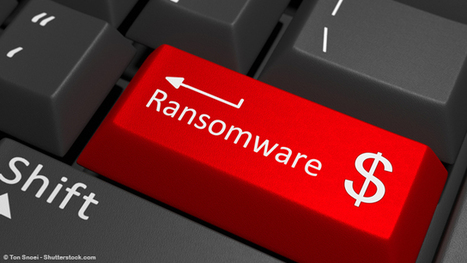 No More Ransom, le portail anti-ransomwares | web2Partner | Scoop.it