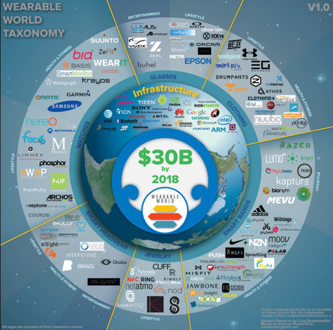 The Wearable Tech Ecosystem in One Easy View (infographic) | Pharma Strategic | Scoop.it