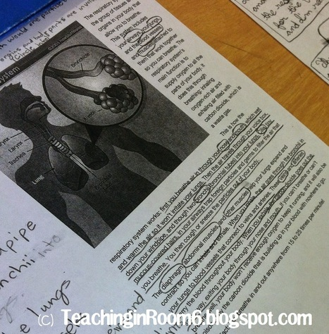 Teaching in Room 6: Nonfiction Text: Reading with a Purpose | Cool School Ideas | Scoop.it