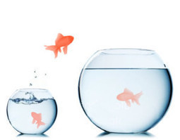 Los beneficios de la Gestión por #Competencias (también) para las #pymes | Empresa 3.0 | Scoop.it
