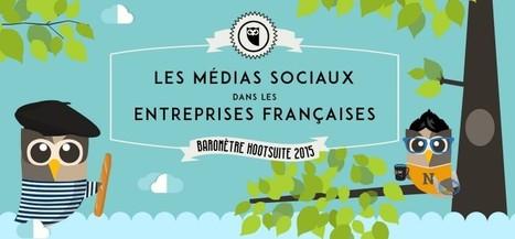 Infographie : les médias sociaux dans les entreprises françaises | Les réseaux sociaux : ce qu'il faut savoir | Scoop.it