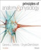 Principles of Anatomy and Physiology, 14th Edition - PDF Free Download - Fox eBook | ciah | Scoop.it