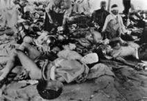 Hiroshima recuerda a sus víctimas 67 años después | Era del conocimiento | Scoop.it