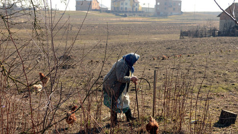 Unit 5: Ukraine Faces Hurdles in Restoring Its Farming Legacy | Scoop.it project | Scoop.it