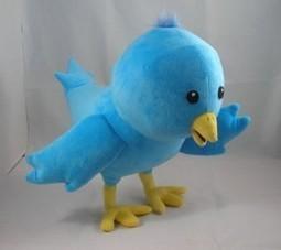 7 Twitter Accounts every Cricket fan definitely needs to follow   Cricket   Scoop.it