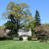 Dean's Tree & Stump Removal