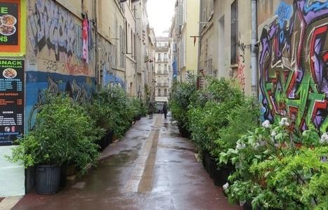 Marseille: Le petit livre vert de la «guérilla jardinière» est sorti | Attitude BIO | Scoop.it