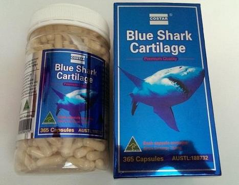 World's #rarest #shark falls victim to #fish #oil market! DON'T let it happen! See below... | Rescue our Ocean's & it's species from Man's Pollution! | Scoop.it