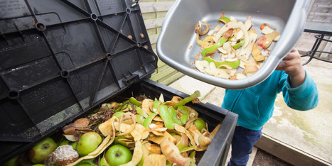 14 Food Waste Facts That Will Make You Want to Change the World - Huffington Post | Food Storage | Scoop.it