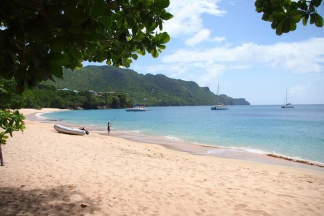 Wish You Were Here: Fishing from the Shore in Bequia | Bequia - All the Best! | Scoop.it