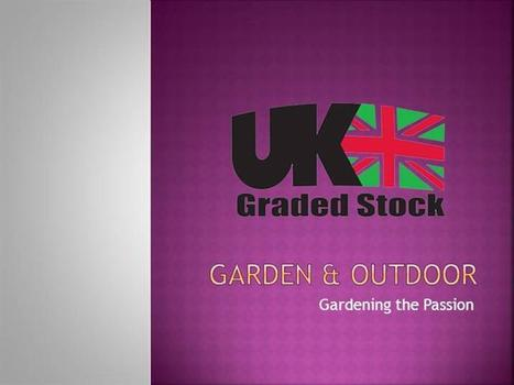 Shop Online for Home, Fashion, Electricals & More on Uk Graded Stock | | What's is Next? | Scoop.it