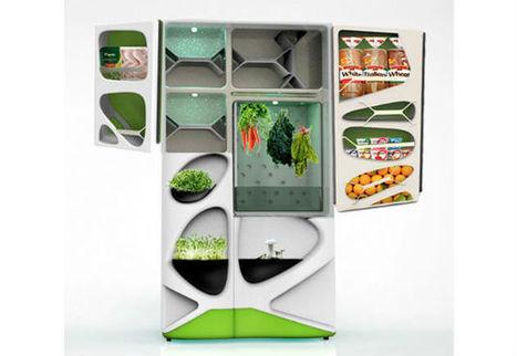 Design : un réfrigérateur vraiment vert | Design, industrie, architecture, innovation, etc. | Scoop.it