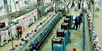 Maroc : L'industrie agroalimentaire mise sur l'Afrique | Questions de développement ... | Scoop.it