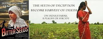 Monsanto and the Seeds of Suicide | YOUR FOOD, YOUR ENVIRONMENT, YOUR HEALTH: #Biotech #GMOs #Pesticides #Chemicals #FactoryFarms #CAFOs #BigFood | Scoop.it