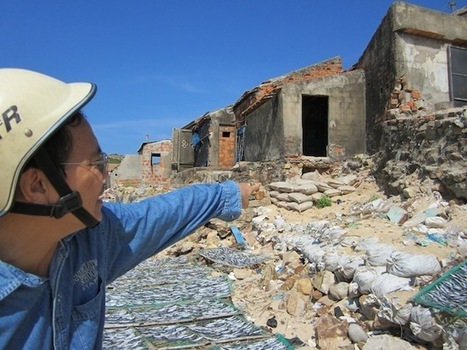 Coastal Erosion Reaches Alarming Levels in Vietnam — Global Issues | IHS 5801 Resources | Scoop.it
