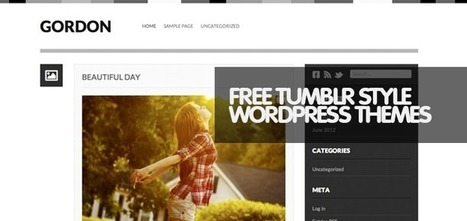 12 Top Free Tumblr Style WordPress Themes of 2013 | Magento | Scoop.it