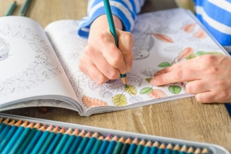 Crayon those freelance blues away: 10 stress-busting grownup colouring books | Unplug | Scoop.it