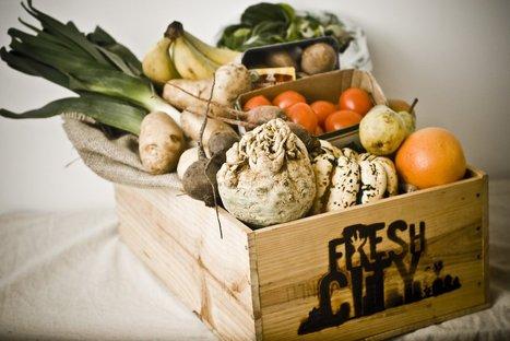 Startup Club: Fresh City Farms - Shalom Life | Cityfarming, Vertical Farming | Scoop.it