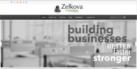 Zelkova Consulting: Developing your Business   Zelkova Consulting   Scoop.it