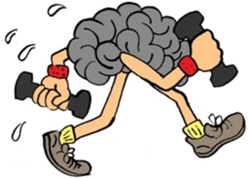 What Happens to Our Brains During Exercise (and Why it Makes Us Happier) | Coaching Leaders | Scoop.it