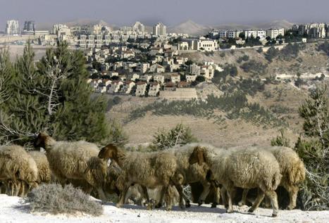 Israel halts plans to explore new settlements | Israel and Iran Kerry Walker | Scoop.it