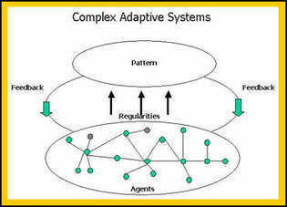 What are Complex Adaptive Systems? | e-Xploration | Scoop.it