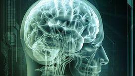 Des puces électroniques qui raisonnent comme un cerveau humain | Remembering tomorrow | Scoop.it