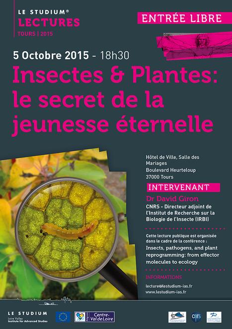 [Conférence] Insectes & Plantes : le secret de la jeunesse éternelle | Lorraine | Scoop.it