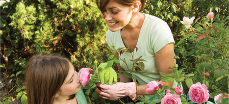 Plant a Rose Garden | Gardening Tips 101 | Scoop.it