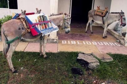 Kijken: in Colombia hebben ze naast de bibliotheek ook de 'biebezel' | trends in bibliotheken | Scoop.it