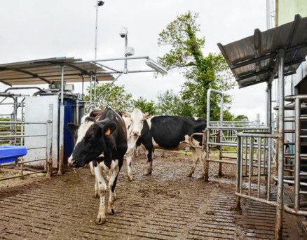 Robot de traite mobile, en direct du champ | RDV Agri, Actu des Professionnels de l'Agriculture. | Scoop.it