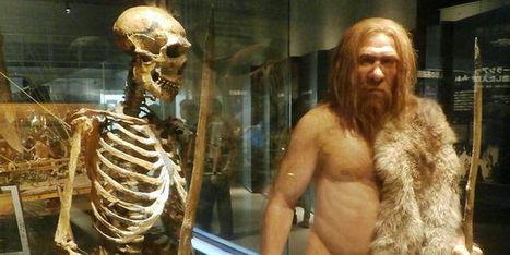 Néandertal a-t-il boosté notre immunité? | responsabilité humaine | Scoop.it