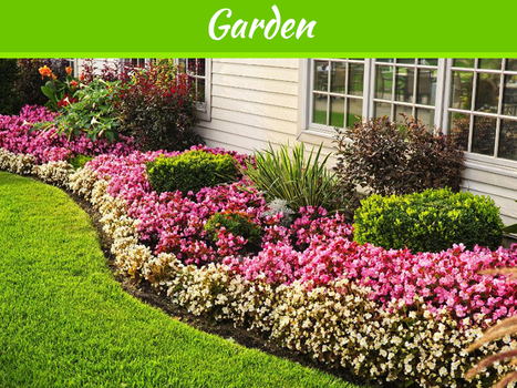 5 Ways to Beautify your Yard this Summer | MyDecorative | Scoop.it