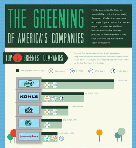 The Greening of America's Companies | green infographics | Scoop.it