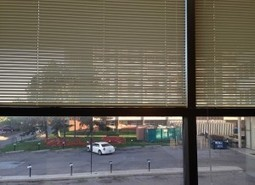 Fed up of Dirty Blinds? This is How I Clean My Window Blinds | Home improvement, Gardening | Scoop.it