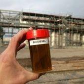 Biocarburants : l'Argentine va porter plainte contre l'UE devant l'OMC | Questions de développement ... | Scoop.it