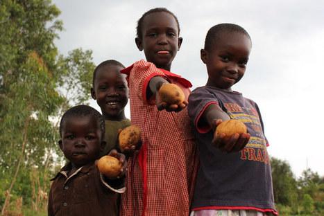 Farming for nutrition: - back to the future | Questions de développement ... | Scoop.it