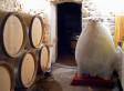 'Concrete Eggs' May Be The Future Of Winemaking - Huffington Post | The Wine Glass | Scoop.it